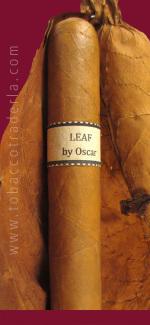 Leaf  By Oscar  Connecticut