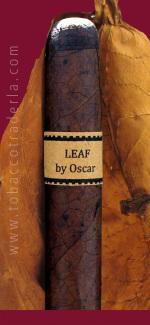 Leaf  By Oscar  Maduro
